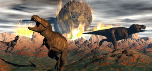 Know how deciduous plants got birth from dinosaur killing meteoroid.