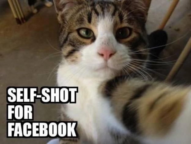 This one is for Facebook