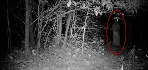 5 Ghost accounts that'll give you the chills