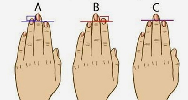 Your fingers indicate your level of femininity