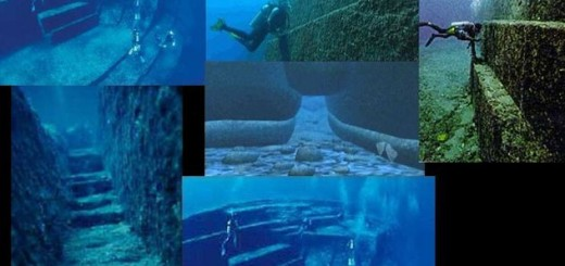 10 Amazing underwater oddities