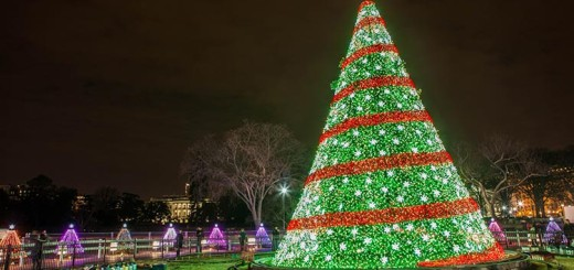 These 7 lavish Christmas trees of 2015 will stun you beyond imagination!