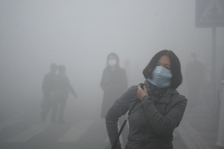Impact of Air Pollution on Life Expectancy
