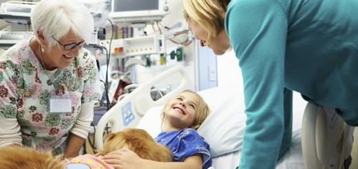 Therapy dogs - the chemotherapy that just about everyone wants to get, specially a kid!