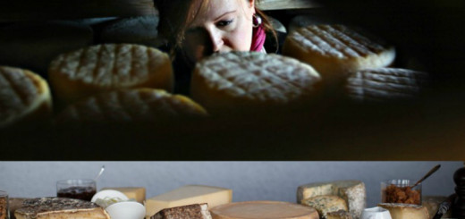 Why 50 species of French cheese have vanished in the last 4 decades?