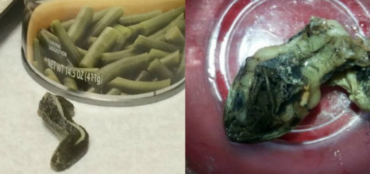 In a horrific incident, a woman discovers a Canned Snake Head among Green Beans!!