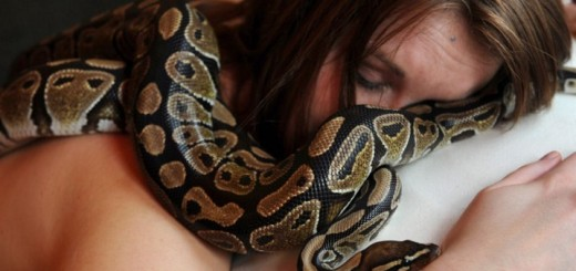 This woman slept with a python every night. When it stopped eating, the vet told something shockingly horrifying!