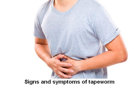 Tapeworm symptoms