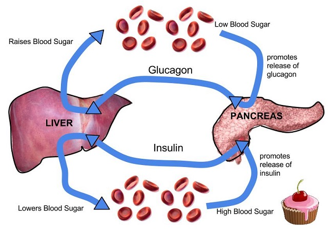 warning Signs of high blood sugar