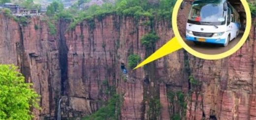 10 Of the scariest bridges in the world guaranteed to make your heart skip a beat