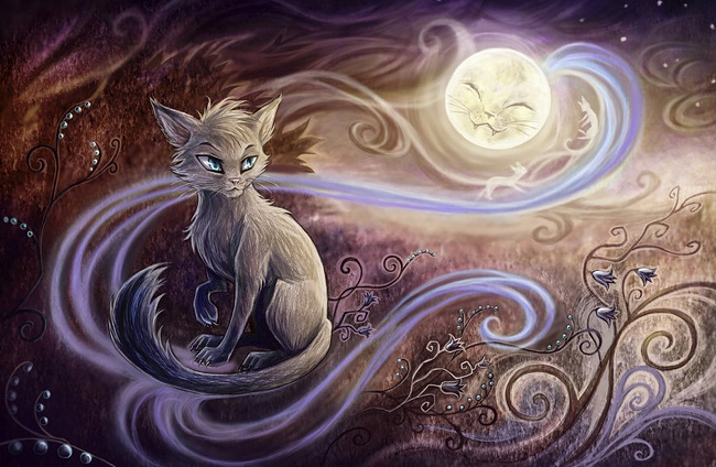 Cats with magical powers