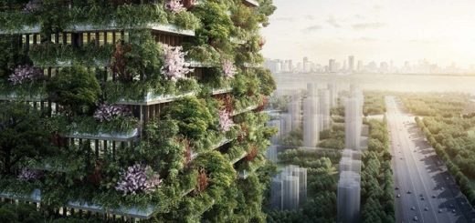 Pollution troubled China has come up with a brilliant idea to tackle pollution. Find out what it is