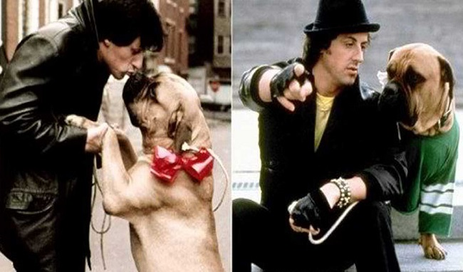 Stallone's Early Days